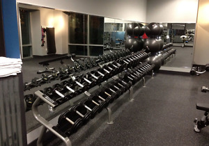 Free Weight Racks at Core Results